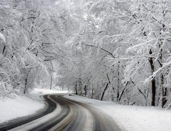 Snow Fall In Roma